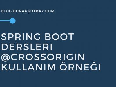 Spring Boot Crossorigin Uygulama Örneği
